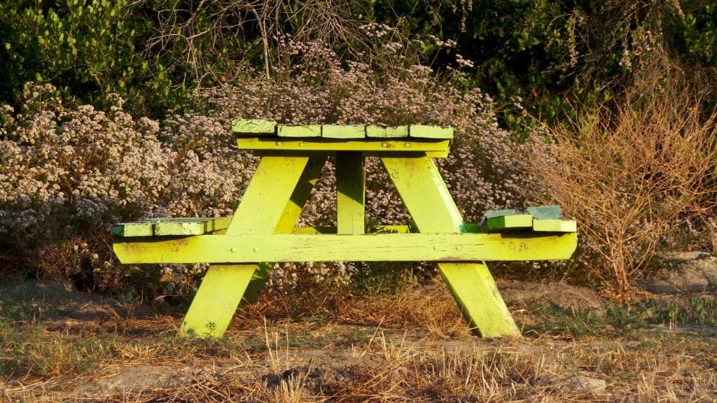 laguna beach picnic bench