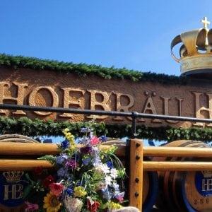oktoberfest hofbrau house