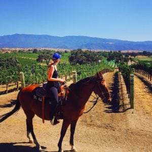 visiting santa ynez valley horseback riding vines vaqueros